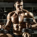 Image bodybuilder-seated-dumbbells-promo.jpg