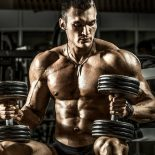 Image bodybuilder-seated-dumbbells-promo.jpg