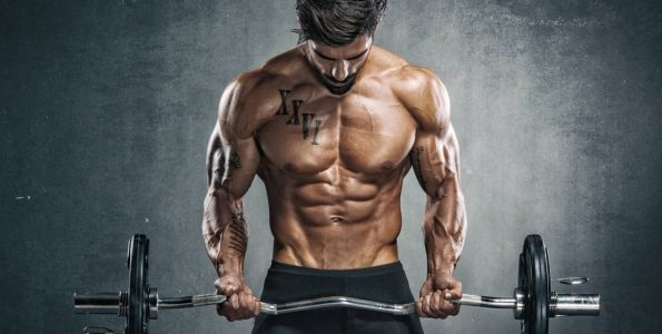 Image ez-bar-curl-lean-muscular.jpg